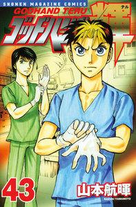 ゴッドハンド輝 (43) 電子書籍版