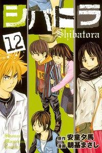 シバトラ 12巻