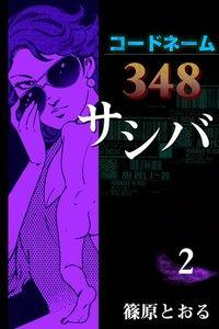 コードネーム348 サシバ 2巻