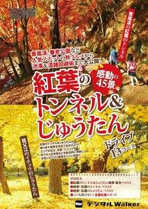 東海ウォーカー特別編集 紅葉のトンネル&じゅうたん感動の45景