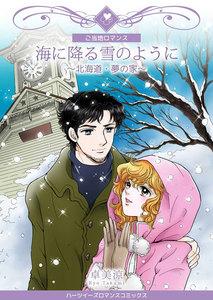 海に降る雪のように~北海道・夢の家~