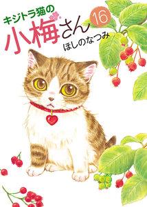 キジトラ猫の小梅さん 16巻