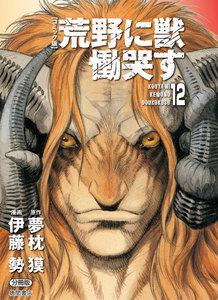 【コミック版】荒野に獣 慟哭す 分冊版12