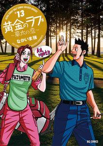 黄金のラフ2~草太の恋~ 13巻