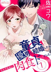 童貞優男と結婚したら、とんでもない肉食ドSでした。 1巻