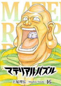 マテリアル・パズル 16巻