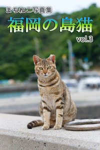 まちねこ写真集・福岡の島猫