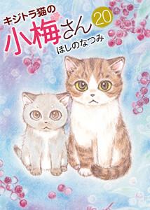 キジトラ猫の小梅さん 20巻