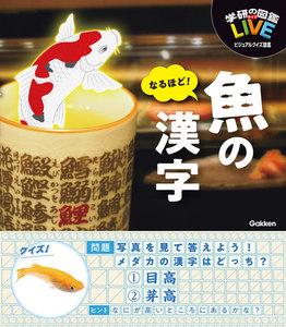 なるほど!魚の漢字