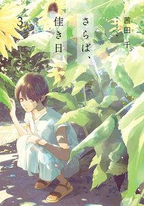 M4100019595161 - 【あらすじ】『さらば、佳き日』8話(3巻)【感想】