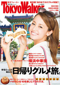 TokyoWalker東京ウォーカー 2014 No.19 電子書籍版