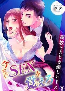 今すぐSEXを覚えろ-調教ときどき優しいキス 3巻