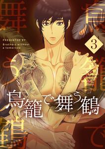 鳥籠で舞う鶴 (3) 電子書籍版