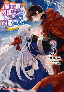 【電子版限定特典付き】魔王の俺が奴隷エルフを嫁にしたんだが、どう愛でればいい?3