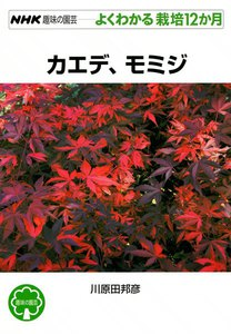 NHK趣味の園芸―よくわかる栽培12か月 カエデ、モミジ