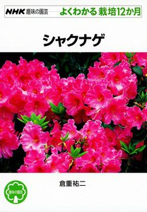 NHK趣味の園芸―よくわかる栽培12か月 シャクナゲ 電子書籍版
