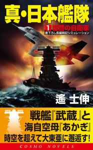 真・日本艦隊(1)復讐の自衛隊 電子書籍版