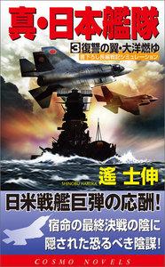 真・日本艦隊(3)復讐の翼・太洋燃ゆ 電子書籍版