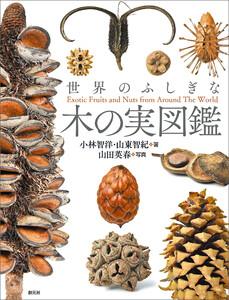 世界のふしぎな木の実図鑑