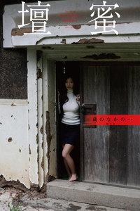 壇蜜 蔵のなかの・・・ 2011-2019 Premium archive デジタル写真集
