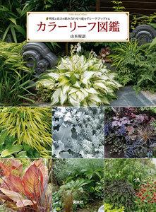 カラーリーフ図鑑 明度と高さの組み合わせで庭をグレードアップする