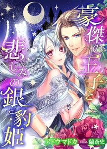 豪傑の王子と悲しみの銀豹姫