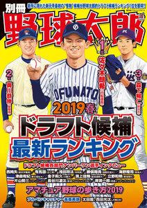 別冊野球太郎 2019春 ドラフト候補最新ランキング 電子書籍版