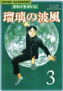 瑠璃の波風 (3) 沈黙の艦隊~海江田四郎青春譜 電子書籍版