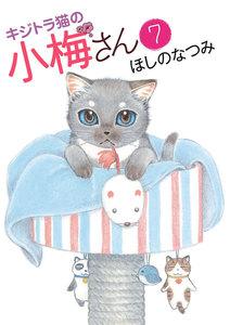 キジトラ猫の小梅さん 7巻