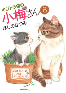 キジトラ猫の小梅さん 8巻