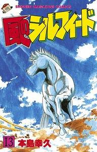 風のシルフィード (13) 電子書籍版