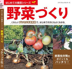 はじめての園芸シリーズ 野菜づくり