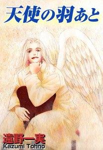 天使の羽あと 電子書籍版