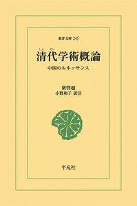 清代学術概論 中国のルネッサンス 電子書籍版