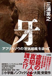 牙 ~アフリカゾウの「密猟組織」を追って~