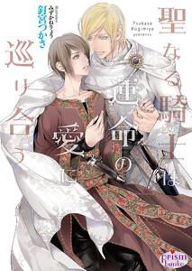 聖なる騎士は運命の愛に巡り合う【電子限定特典付】