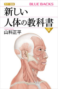 カラー図解 新しい人体の教科書 (上)