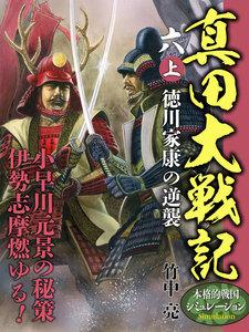 真田大戦記 六 (上) 徳川家康の逆襲