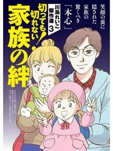 川島れいこ傑作選 3巻 電子書籍版