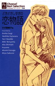 どきどきしすぎの恋物語 電子書籍版
