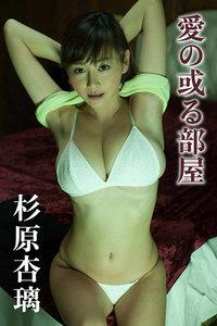 杉原杏璃 愛の或る部屋【image.tvデジタル写真集】