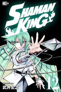 SHAMAN KING ~シャーマンキング~ KC完結版 12巻