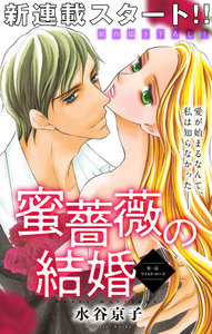 Love Silky 蜜薔薇の結婚