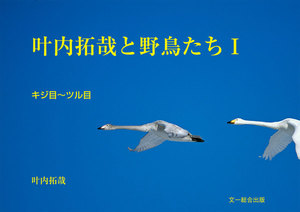 叶内拓哉と野鳥たちI(キジ目~ツル目)