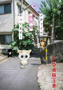 メチャイロちいき猫やってます!【分冊版】 3巻