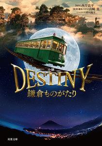 小説 DESTINY 鎌倉ものがたり