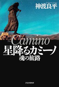 星降るカミーノ 魂の旅路