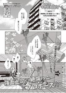 無愛想上司×絶倫ハニー【短編】