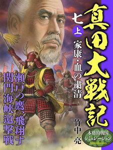 真田大戦記 七 (上) 家康・血の粛清
