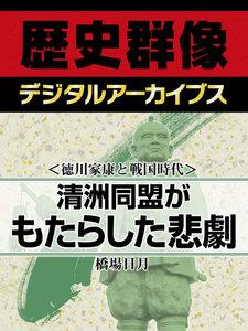 <徳川家康と戦国時代>清洲同盟がもたらした悲劇